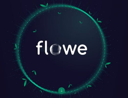 Flowe: il conto eco-friendly italiano, con carta in legno